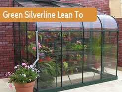 Green Silverline Lean To