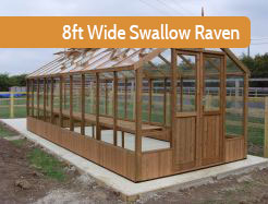 8ft Wide Swallow Raven