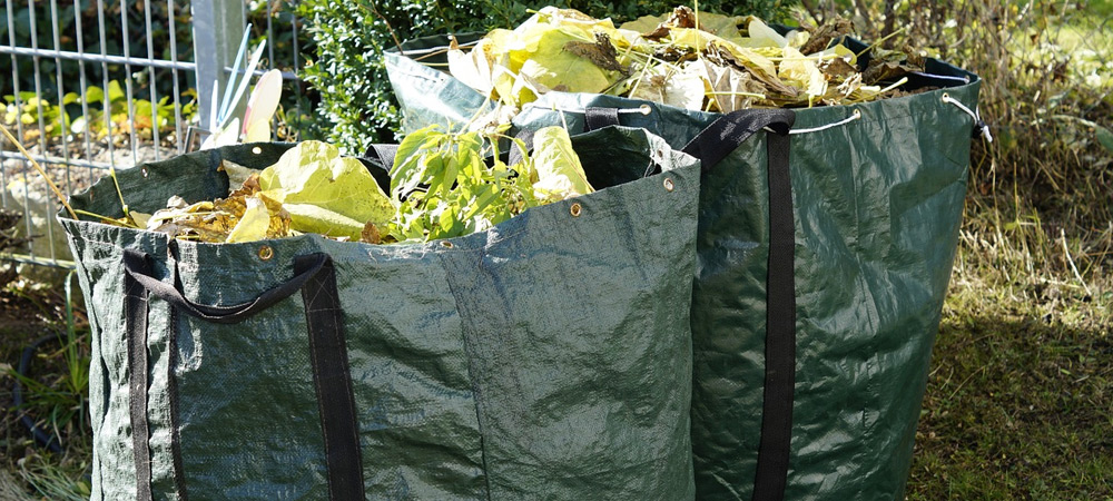clearing rubbish from allotment