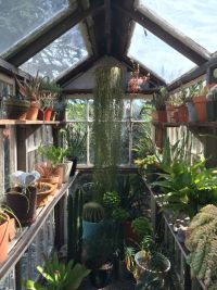 Where to Start with Your Greenhouse Shelving