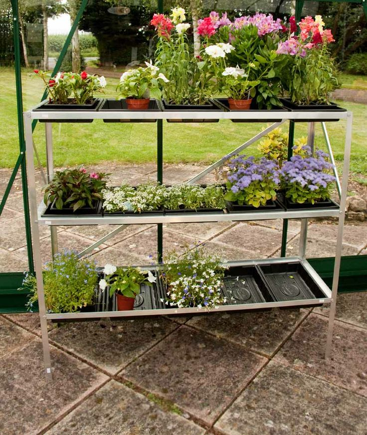 Halls 15 Seed Tray Stand